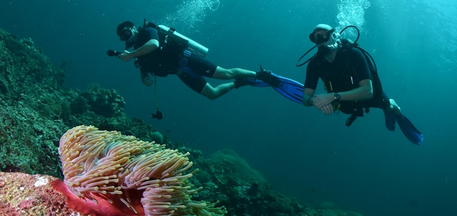 This is Ryan Sweeney and I diving in the Andaman Sea. . .